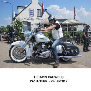 Herwin Pauwels